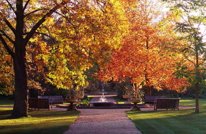 botanic-gardens-oxford